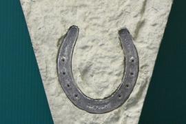 SS horse shoe